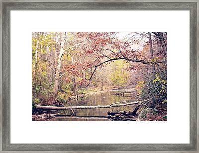 Chester County Creek Framed Print
