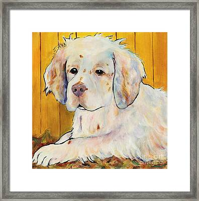 Chester Framed Print by Pat Saunders-White
