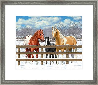 Chestnut Appaloosa Palomino Pinto Black Foal Horses In Snow Framed Print by Crista Forest