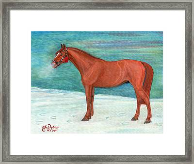Chestnut Horse Framed Print by Anna Folkartanna Maciejewska-Dyba