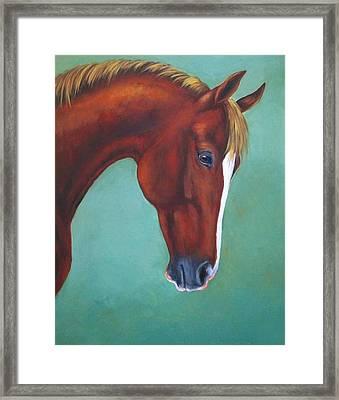 Chestnut Horse Framed Print by Oksana Zotkina
