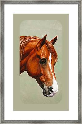Chestnut Morgan Horse Phone Case Framed Print by Crista Forest