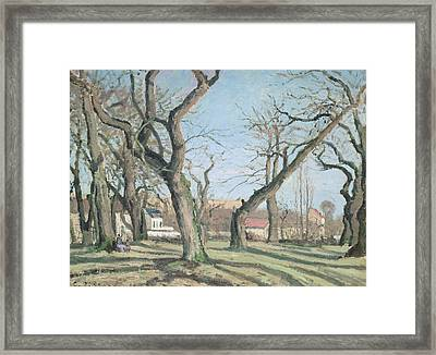Chestnut Trees At Louveciennes Framed Print