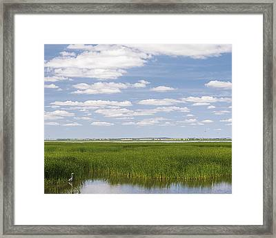Cheyenne Bottoms Framed Print