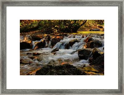 Framed Print featuring the photograph Cheyenne Canyon Autumn by Ellen Heaverlo