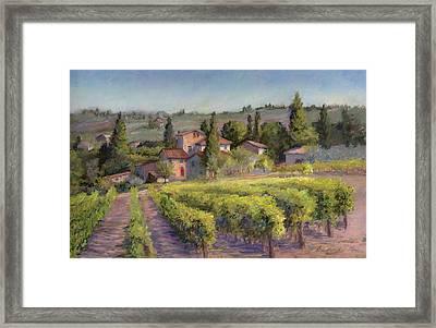 Chianti Vineyard Framed Print