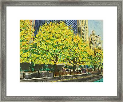 Chicago Boat Ride In The Fall Framed Print