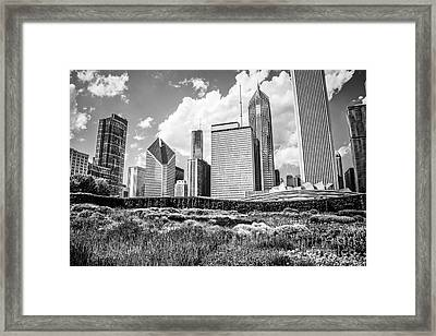 Chicago Skyline At Lurie Garden Black And White Photo Framed Print