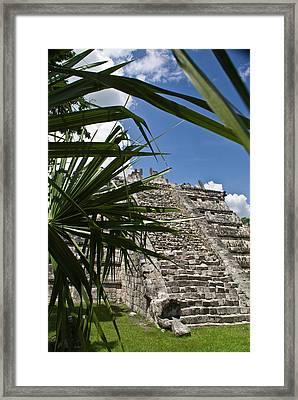 Chichen Itza 2 Framed Print by Douglas Barnett