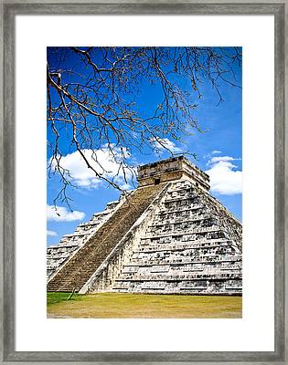Chichen Itza And Tree Framed Print