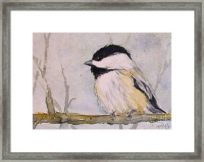 Chickadee Dee Dee Framed Print