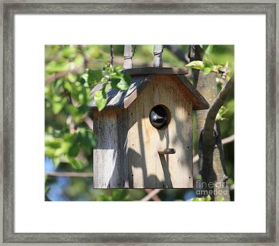 Chickadee In Birdhouse Framed Print by Marjorie Imbeau