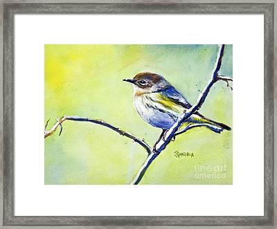 Chickadee Framed Print by Joyce A Guariglia