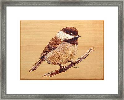 Framed Print featuring the pyrography Chickadee by Ron Haist