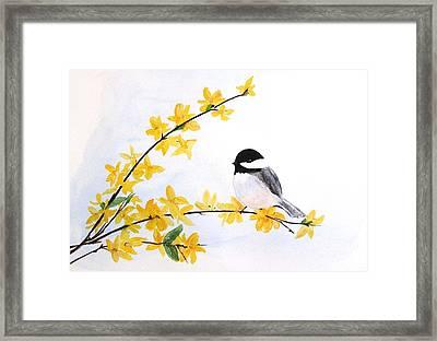 Chickadee Spring  Framed Print