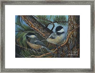 Chickadees Framed Print
