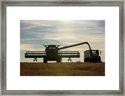 Chickpea Silhouette Framed Print by Todd Klassy