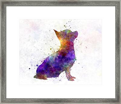 Chihuahua 01 In Watercolor Framed Print