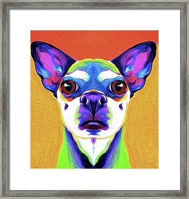 Chihuahua By Nixo Framed Print