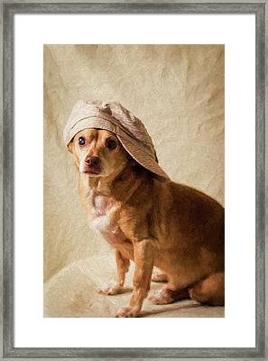 Chihuahua In A Newsboy Hat Framed Print
