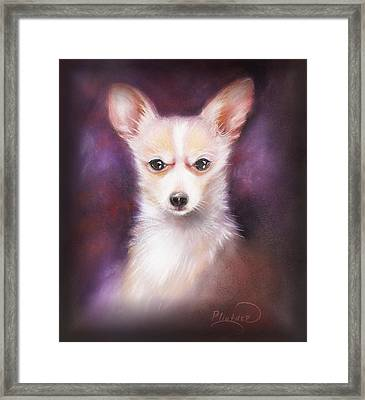 Framed Print featuring the drawing Chihuahua No. 1 by Patricia Lintner