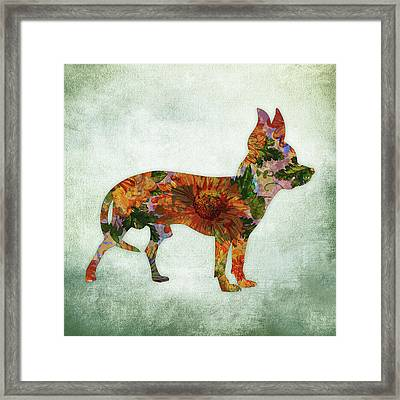 Chihuahua On Green Framed Print