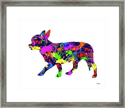 Chihuahua Paint Splatter Framed Print by Gregory Murray