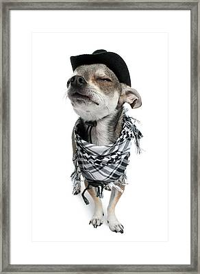 Chihuahua Wearing A Scarf And A Cowboy Hat Framed Print by Life On White