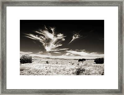 Chihuahuan Desert In Sepia Framed Print by Allen Sheffield