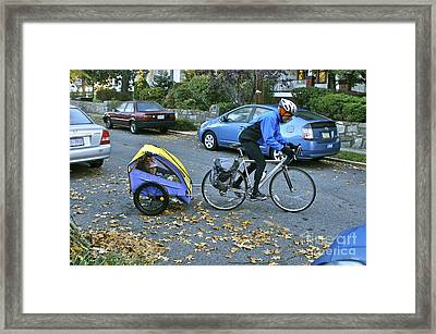 Child Cart Pulled By Fathers Bicycle Framed Print