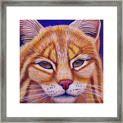 Child Of The Day Framed Print by Brian Commerford