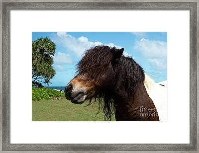Child Of The Sun Keanae Pony Love Framed Print by Sharon Mau