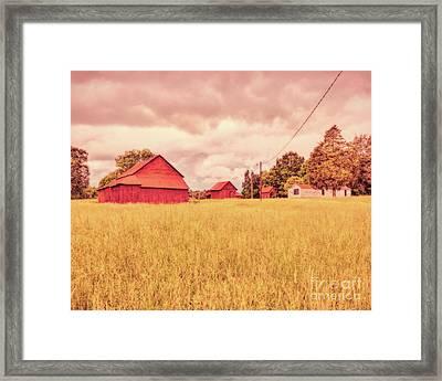 Childhood Delight Framed Print