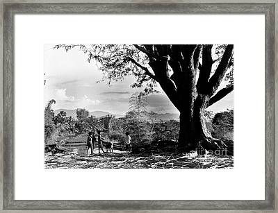 Children Of Central Highland Are Playing With A Dog Framed Print