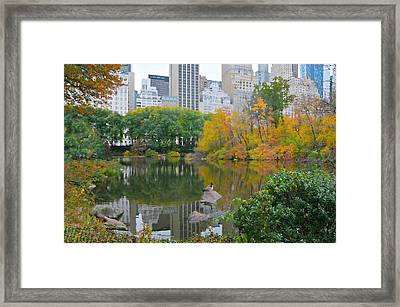 You Make Me Feel Brand New Framed Print by Diana Angstadt