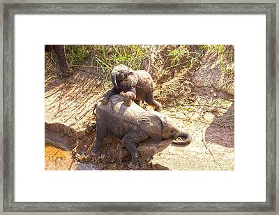 Childsplay On The Riverbank Framed Print