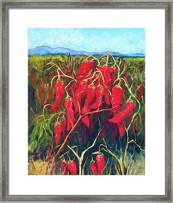 Chile Field Framed Print by Candy Mayer