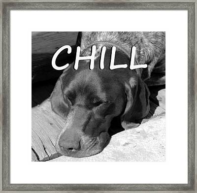 Chill Framed Print by David Lee Thompson