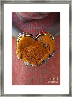 Chilli Powder Framed Print by Tim Gainey