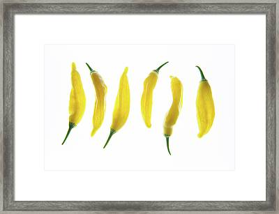 Chillies Lined Up II Framed Print