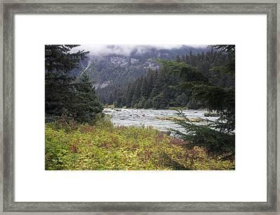 Chillkoot River 3 Framed Print
