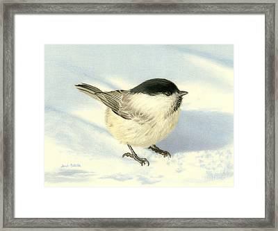 Chilly Chickadee Framed Print by Sarah Batalka