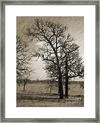 Chillyday Framed Print by Cheri Doyle