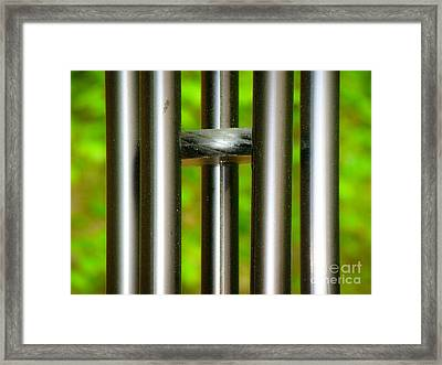 Chiming In Framed Print