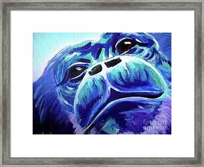 Chimp - Rainforest Dreams Framed Print