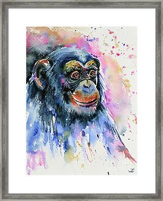 Chimp Framed Print by Zaira Dzhaubaeva