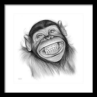 Chimpanzee Drawings Framed Prints