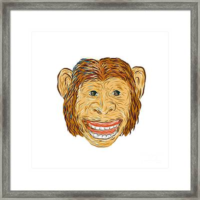 Chimpanzee Head Front Isolated Framed Print