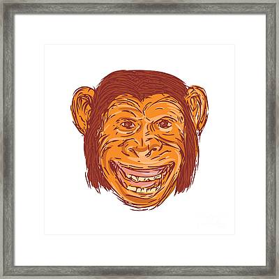 Chimpanzee Head Front Isolated Drawing Framed Print