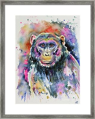 Chimpanzee Framed Print by Zaira Dzhaubaeva
